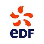 Majerik Magicien de EDF